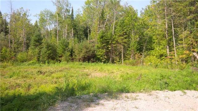 pictures of 2566 25th Side Rd, Innisfil L9S2K1
