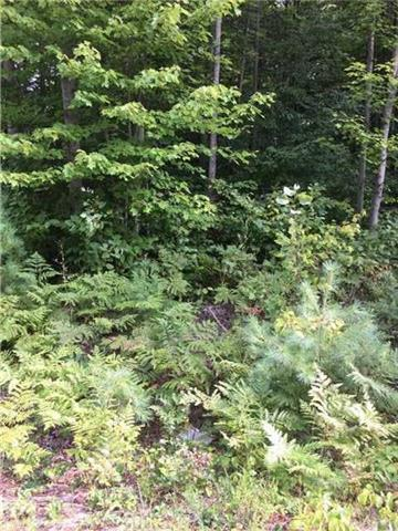 pictures of 55 Woodland Heights Dr, Adjala-Tosorontio L0M1G0
