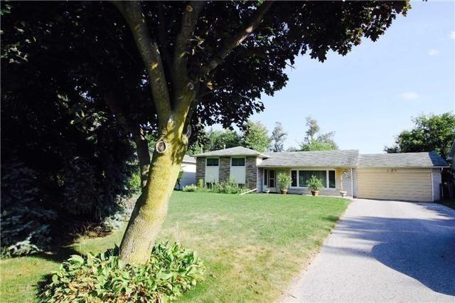 pictures of 81 N Lake Rd, Richmond Hill L4E1A8