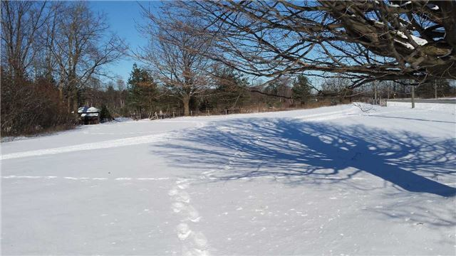 pictures of Lot 21 20th Side Sdrd, Barrie Na