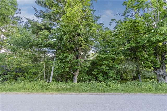 pictures of 3926 Airport Rd, Ramara L3V 6H6