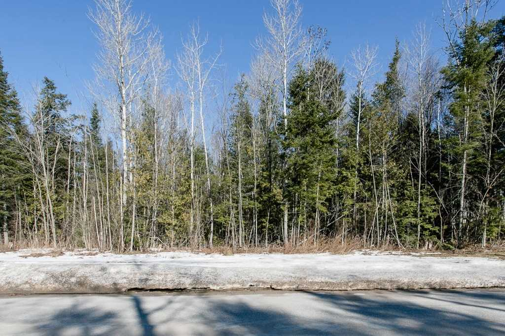 Image 3 of 9 showing inside of 0 Bedroom Vacant Land  house for sale at Lot 19A Marni Lane, Springwater L0L2K0