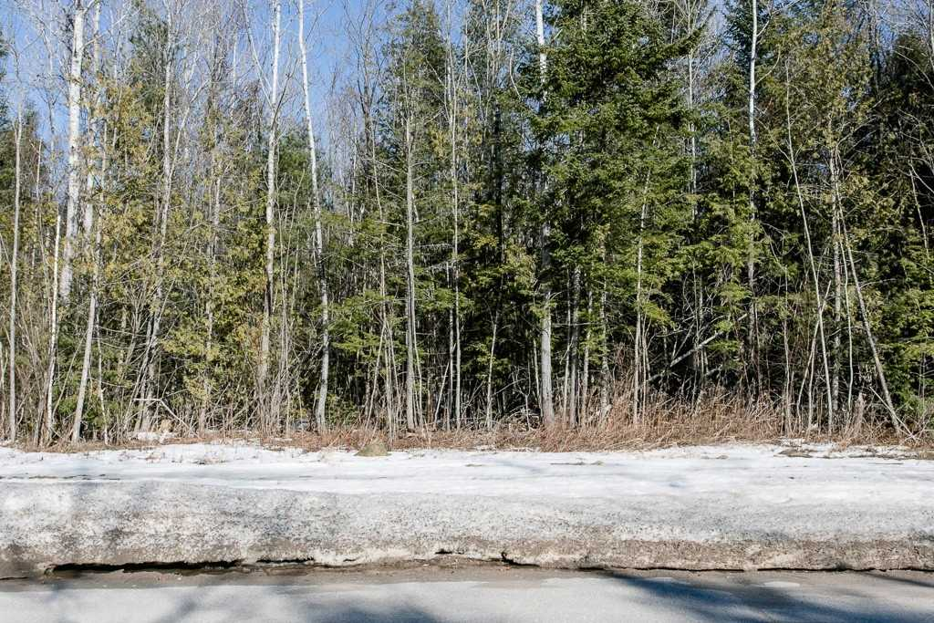 Image 4 of 9 showing inside of 0 Bedroom Vacant Land  house for sale at Lot 19A Marni Lane, Springwater L0L2K0