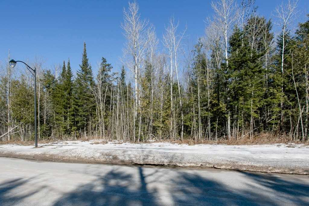 Image 5 of 9 showing inside of 0 Bedroom Vacant Land  house for sale at Lot 19A Marni Lane, Springwater L0L2K0