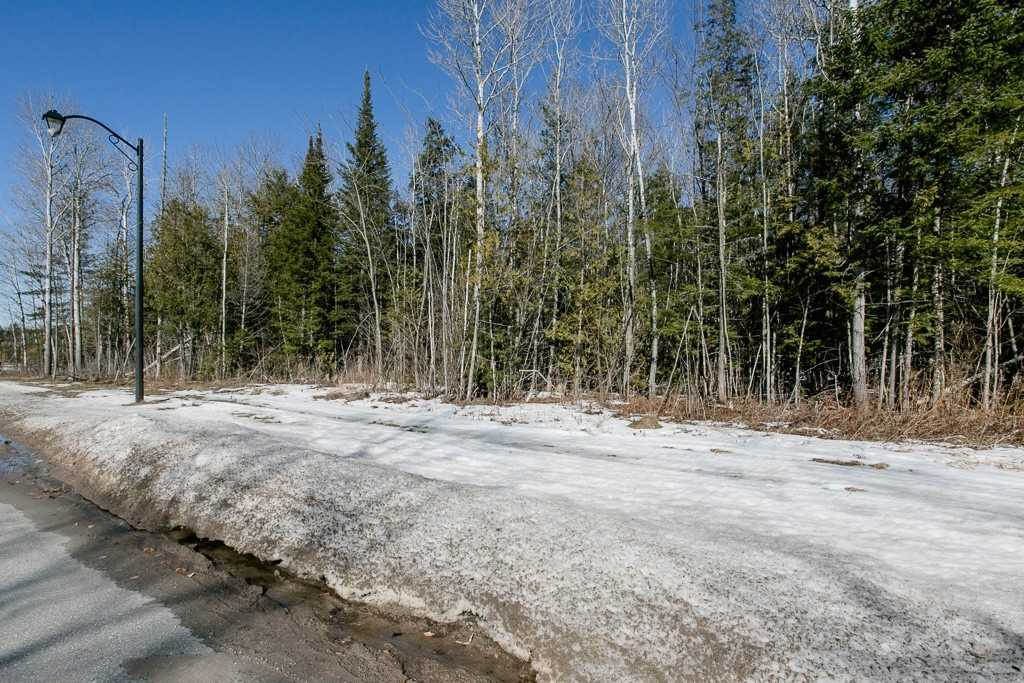 Image 6 of 9 showing inside of 0 Bedroom Vacant Land  house for sale at Lot 19A Marni Lane, Springwater L0L2K0