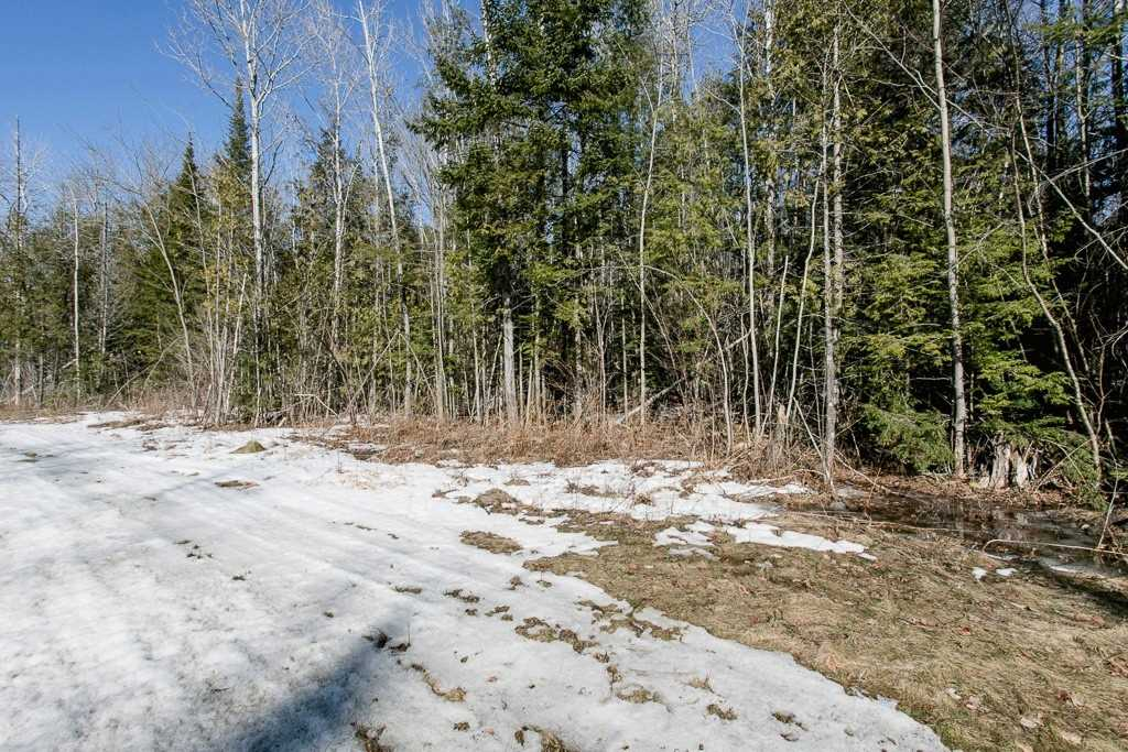 Image 7 of 9 showing inside of 0 Bedroom Vacant Land  house for sale at Lot 19A Marni Lane, Springwater L0L2K0