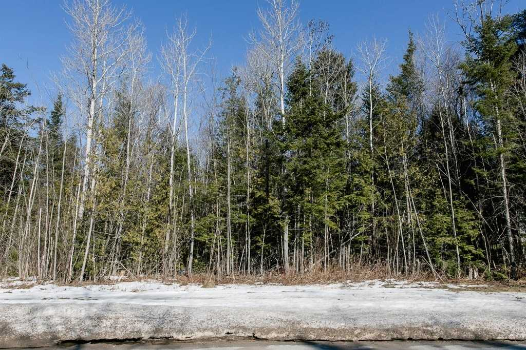 Image 8 of 9 showing inside of 0 Bedroom Vacant Land  house for sale at Lot 19A Marni Lane, Springwater L0L2K0
