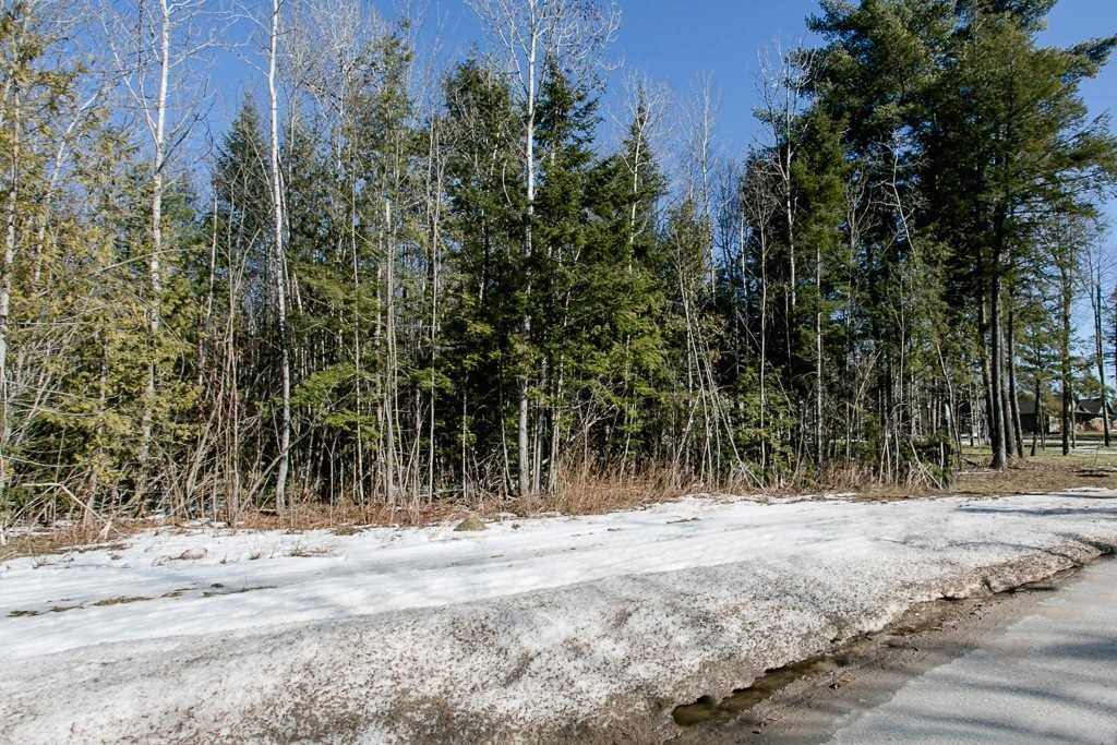 Image 9 of 9 showing inside of 0 Bedroom Vacant Land  house for sale at Lot 19A Marni Lane, Springwater L0L2K0