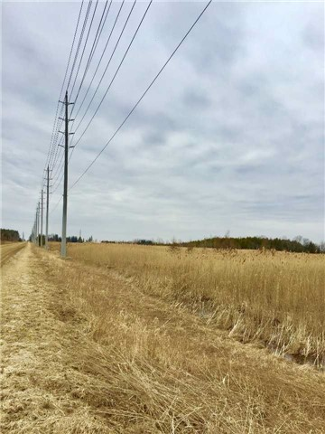pictures of 16/17 10th Line Rd, Amaranth L0N1G0