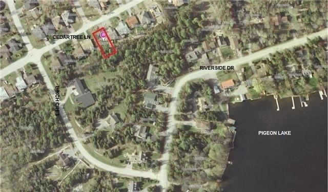 pictures of house for sale MLS: X4345321 located at 56 Cedartree Lane, Kawartha Lakes K0M1A0