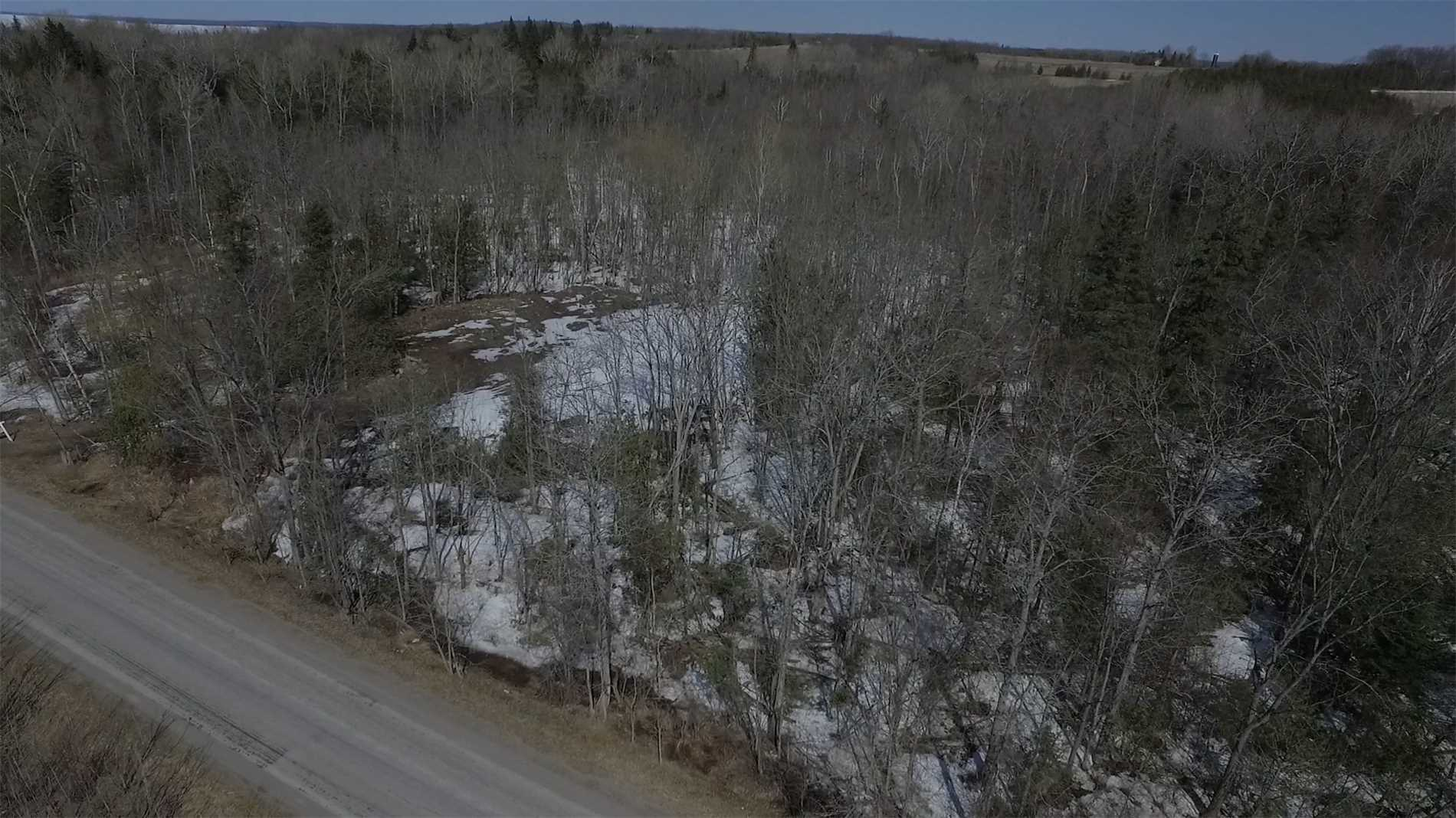 pictures of 0 Birch Point Rd, Kawartha Lakes K0M 2T0
