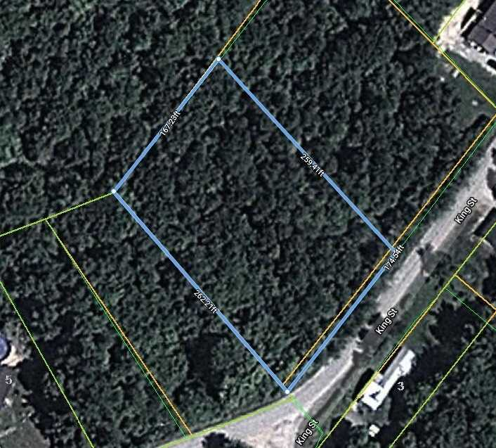 pictures of house for sale MLS: X4623401 located at 0 King St, Kawartha Lakes K0M2L0