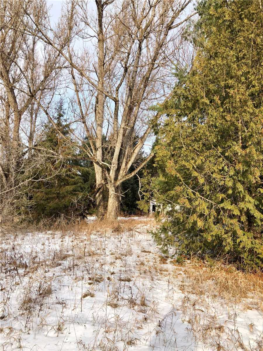 pictures of house for sale MLS: X4652036 located at 6 Burnt River Rd, Kawartha Lakes K0M1C0