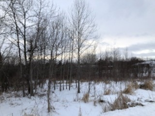 pictures of house for sale MLS: X4675562 located at Lot 3 Ball Point Rd, Kawartha Lakes K0M2C0