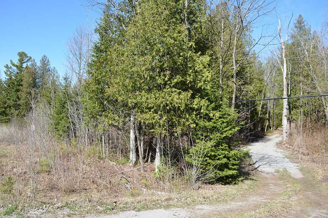 pictures of house for sale MLS: X4721673 located at Pt 2 Highway 35 N, Kawartha Lakes K0M1K0