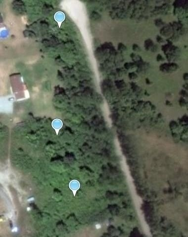 pictures of house for sale MLS: X4726689 located at 00 Pigden Rd, Madoc K0K2K0