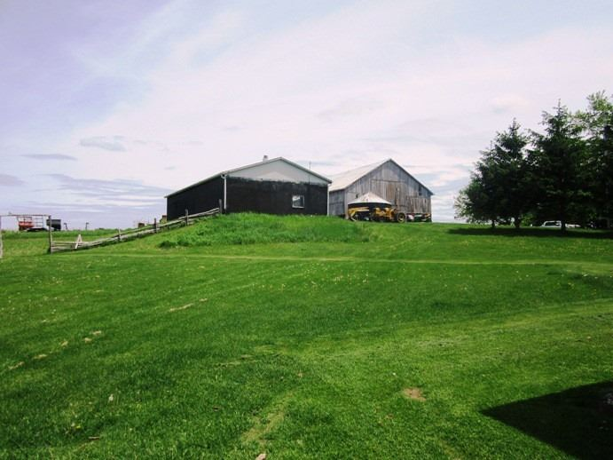 pictures of house for sale MLS: X4728228 located at 477399 3rd Line, Melancthon L9V1T6