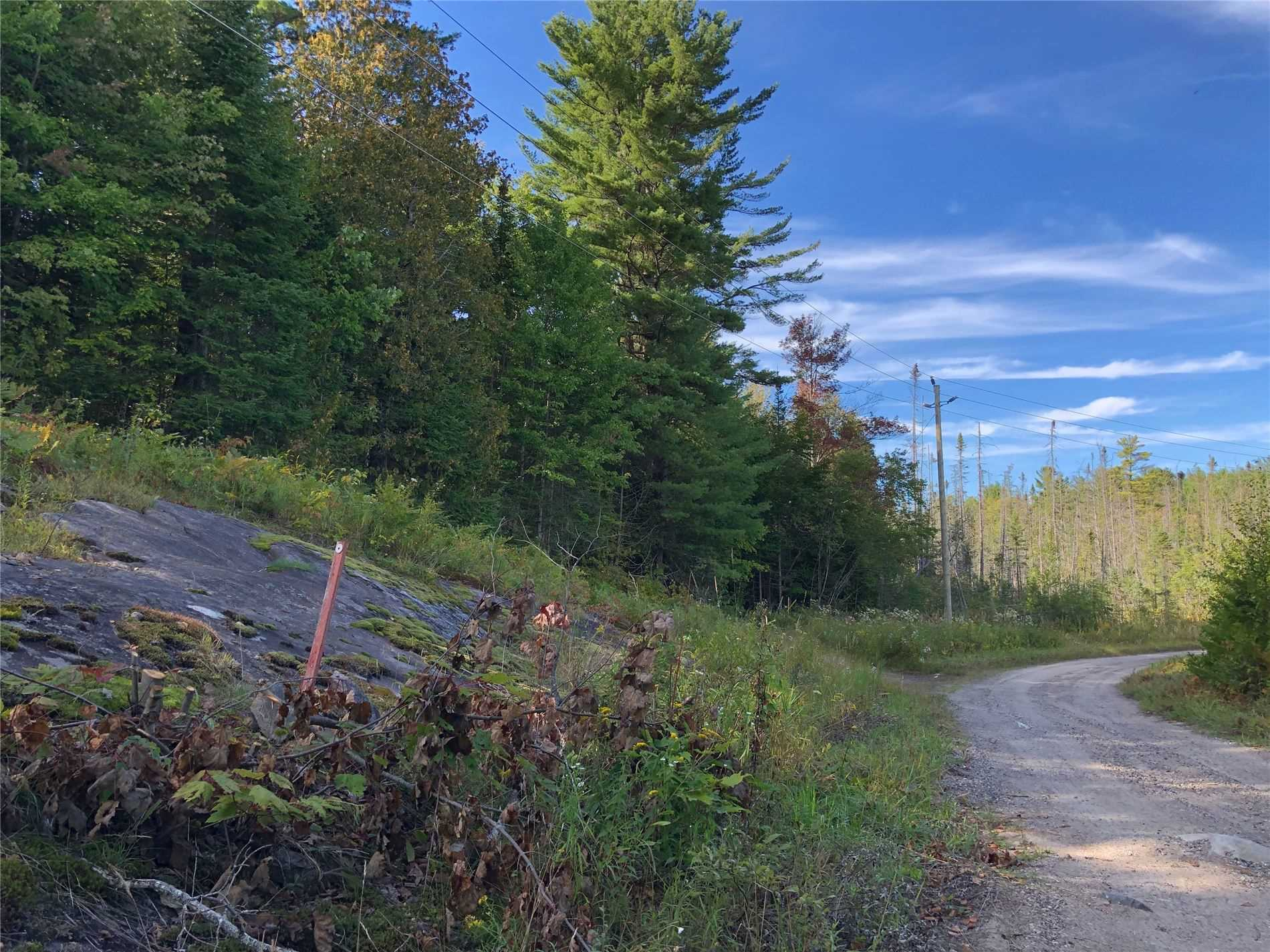 pictures of house for sale MLS: X4751491 located at Lot 4 Old Muskoka Rd, Bracebridge P1L1X4