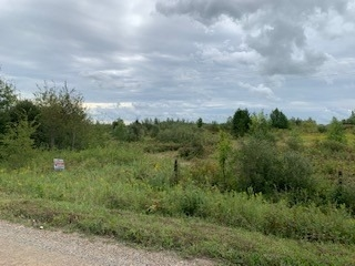 pictures of house for sale MLS: X5074145 located at 0 15 Sideroad, Amaranth L9W0E4