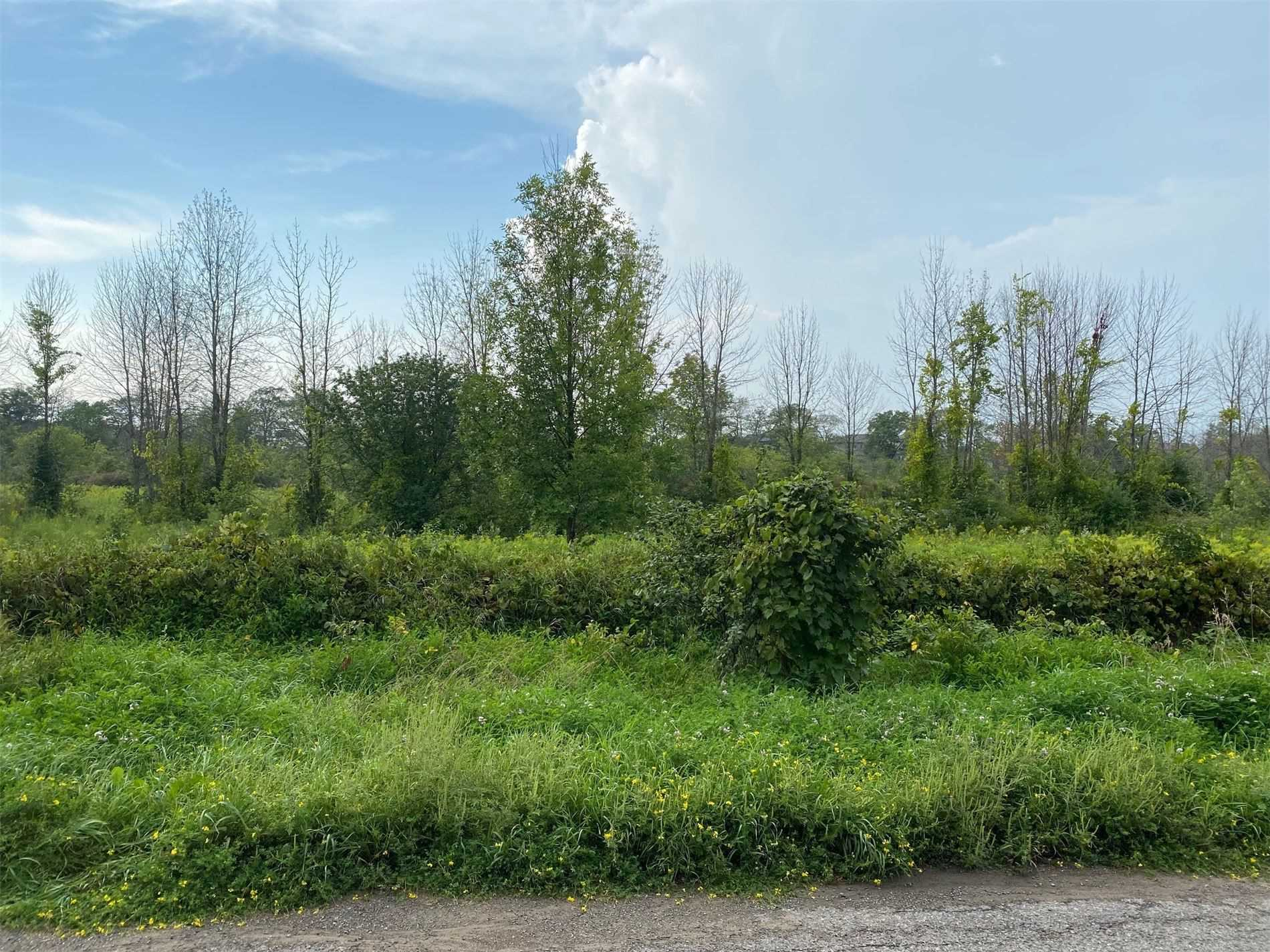pictures of house for sale MLS: X5299381 located at Lot 7 Sully Rd, Hamilton Township K0K2E0
